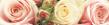 frise-fleur